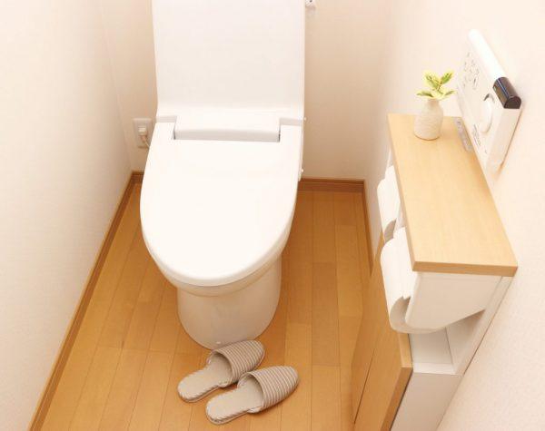 驚愕!今どきの節水トイレ事情